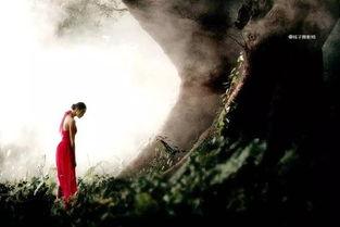 ...青灯,落入红尘寻找千年前那一世的尘缘.-朗诵 菩提树下,再等千年