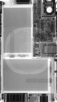 苹果IOS10官方内置壁纸 鱼 尾巴 橘色 苹果手机高清壁纸 1080x1920 ...