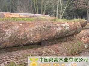 30+(70%40+)   长度:3米,   数量:每月1000立方米