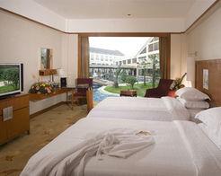 高级标准间客房:面积38平方米.客房室内空间设计豪华、舒适、温...