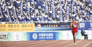 Wang Hao takes race walk gold medal at Chinese National Games