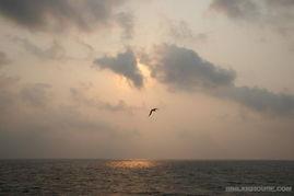 在西沙,沐浴温柔海风 攻略 游记 原图