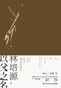 长篇小说《以父之名》-林培源 我想避免平庸的现实主义
