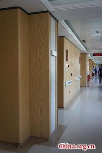 ...共提供100个单间床位.图为VIP病房.[中国网 徐林摄]-医养融合 搭...