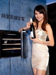 ...RISTON入式酒柜WL 24,提供藏酒人极佳的收藏空间-美女来助阵 ...