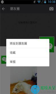 微信转发模块app下载 微信转发模块安卓版 v3.6.0 官方最新版 系统工...