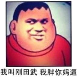 表情 社会你胖虎 哆啦A梦 胖虎表情包 斗图表情包 微信表情包大全 QQ...