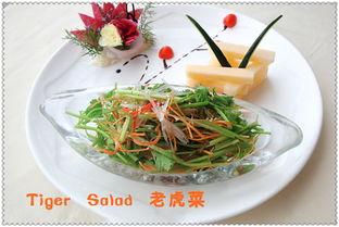 小学英语学习 Chinese Food 26 Tiger Salad 老虎菜