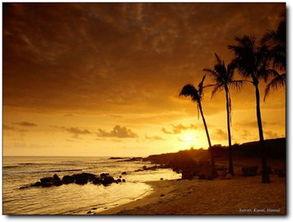 最美不过夕阳红温馨又从容夕阳是晚开的花夕阳是陈年的酒