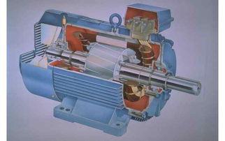 三相异步电动机 同步电动机 电动机工作原理 中国电动