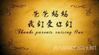 初中感恩父母演讲稿400字