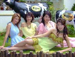 熟女欲望日记,台湾版的欲望都市