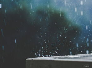 描写冬雨的古风优美句子