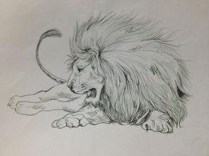 素描画-雄狮素描