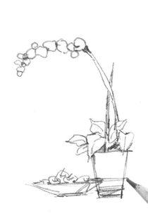 速写桌上盆景的画法步骤六-速写植物的绘画步骤 3