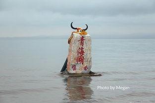 ...16去额济纳旗寻找守望三千年的胡杨林
