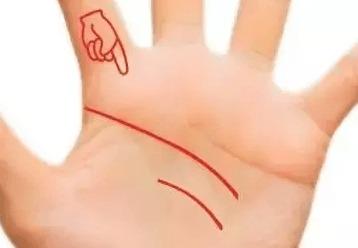 明灵巧的人会有两根智慧线.快看看你手没有~~~   宠爱线   挨着生命线...
