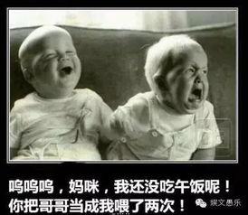 央视主持界元老倪萍被黑背后令谁蒙羞