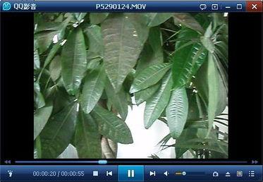 教你使用QQ影音的视频压缩功能