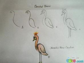 教小朋友简单几笔画出丹顶鹤
