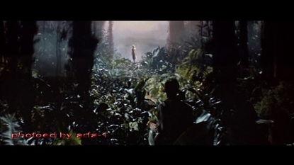 丛林,住在一个印第安部落中,他想在丛林中寻找金子,以报父仇....