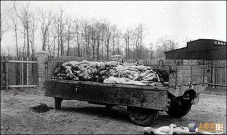 布痕瓦尔德集中营