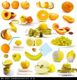 创意水果高清大图图片免费下载 编号282601 红动网
