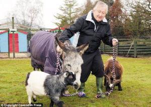 南山兵哥大长茎-一般毛驴的寿命在25岁到30岁之间,但是英国一头毛驴如今已经有54...
