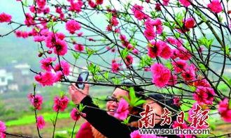 蔚县打树花是怎么打的