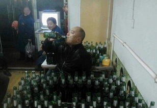 东北人喝酒套路,太经典了
