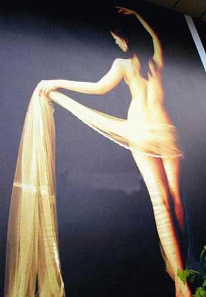 成都人体摄影展冷清开场 模特全是花季少女
