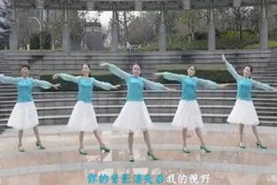 怎样下载广场舞视频