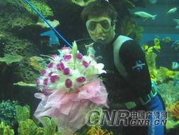 ...岛小伙 海底 隔着玻璃向女友求婚