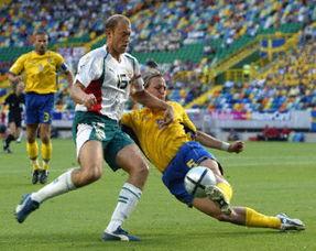 瑞典左脚突击兵训练受伤 世界杯梦想恐遭打击