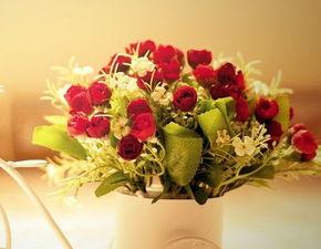 ... 黑玫瑰花语里落花温柔