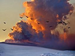 成的火山灰云中飞过.这座火山喷发的火山灰使欧洲空中交通中断超过...