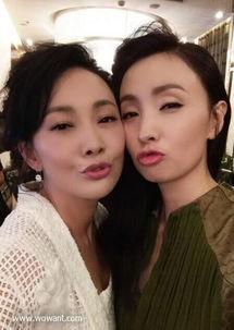 徐峥出轨视频 徐峥与夜店妹搂抱照,陶虹说肉体出轨不算事 双双出轨