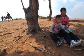 神木林kigurumi 窒息-...红碱淖位于陕西神木县西北,系中国最大沙漠淡水湖,也是世界上最...