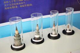联通展厅里的海底光缆-青岛联通打造光网岛城 2014年网速快10倍