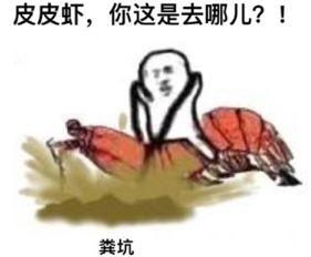 皮皮虾不走微信表情图片